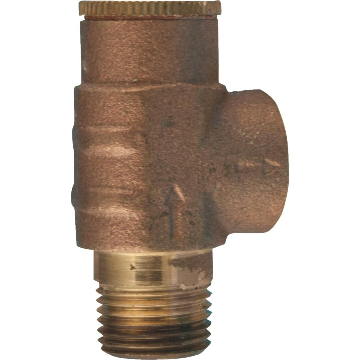 Star Water Systems 1/2 In. 70 PSI Pressure Relief Valve Image 1